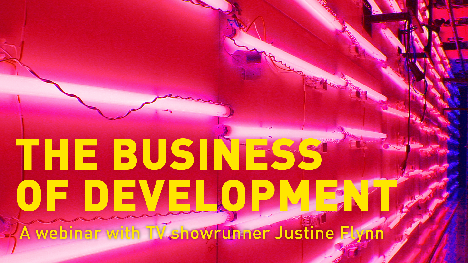 THE BUSINESS OF DEVELOPMENT: A webinar with TV showrunner Justine Flynn - Information & Cultural Exchange